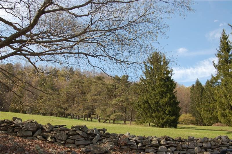 Stonewall Meadow View
